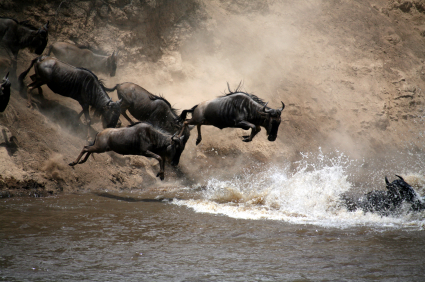 Attention CHROs: Will Your HR Department Join the Great Migration Next Year?