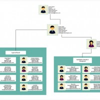 Can an Organizational Chart Really Make You Better at Your Job as an HR Executive?