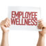 4 ROI Friendly Ways You Can Implement Workplace Wellness Programs