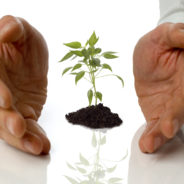 Invest in Professional Development for a Brighter Business Future